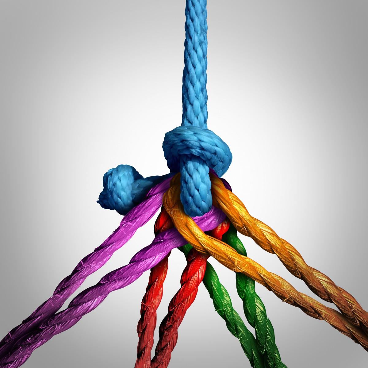 many different ropes